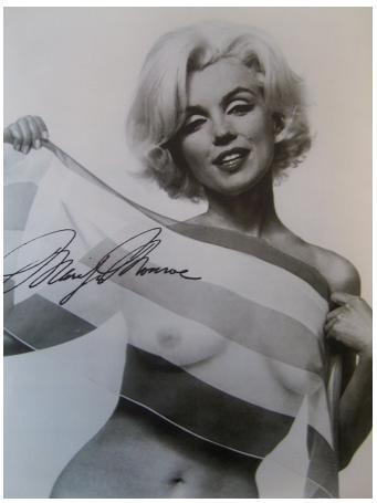 Marilyn monroe boobs words... super